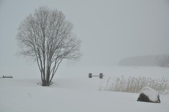 Winter at Camp Viking