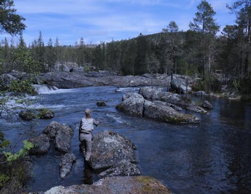 Fishing Camp Viking