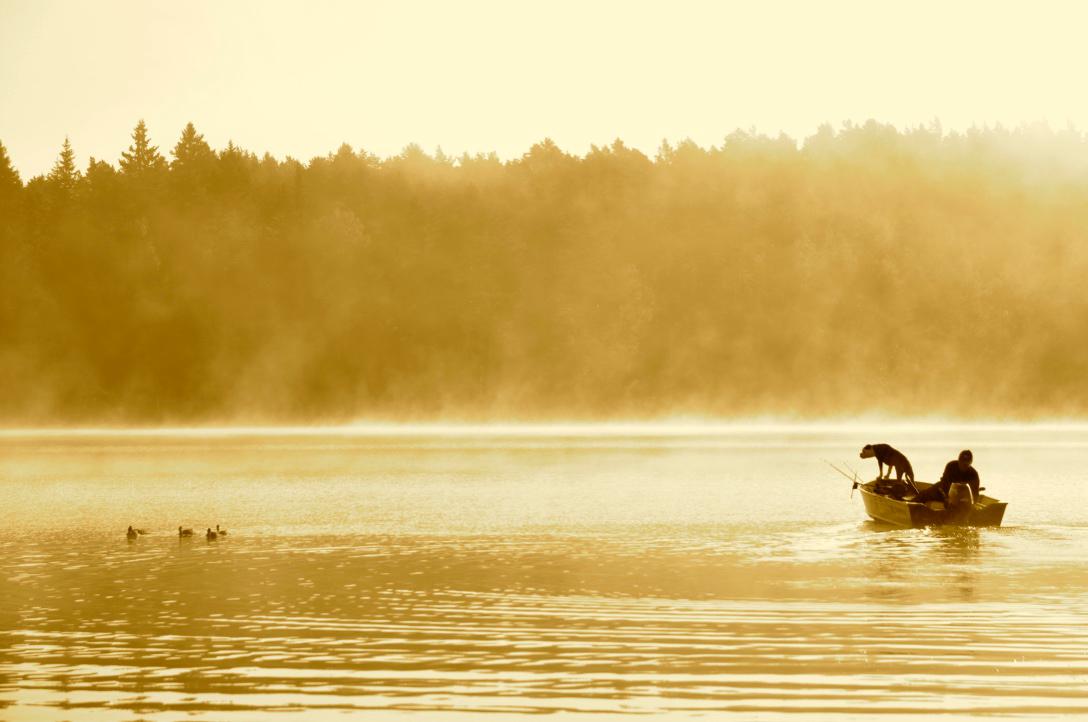 Fishing / Boat rental Camp Viking